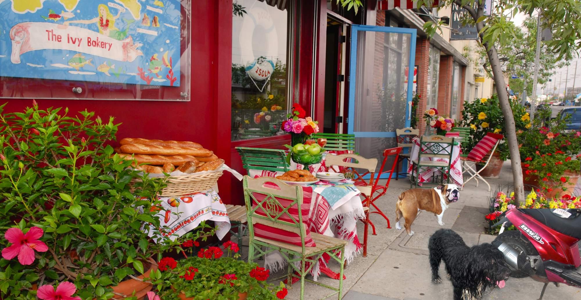Ivy Restaurant West Hollywood